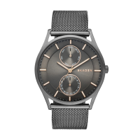 Skagen Horloge Holst Large SKW6180