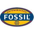 Fossil Armbanden