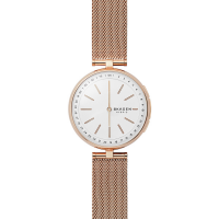 Skagen SKT1404 Connected Watch 36mm