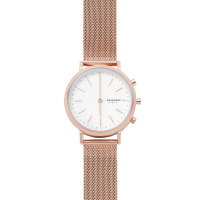 Skagen SKT1411 Hald connected 34mm